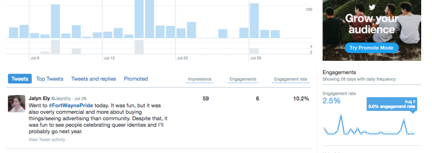Screenshot of Twitter analytics' Tweet Activity screen, featuring charts and graphs about tweet activity